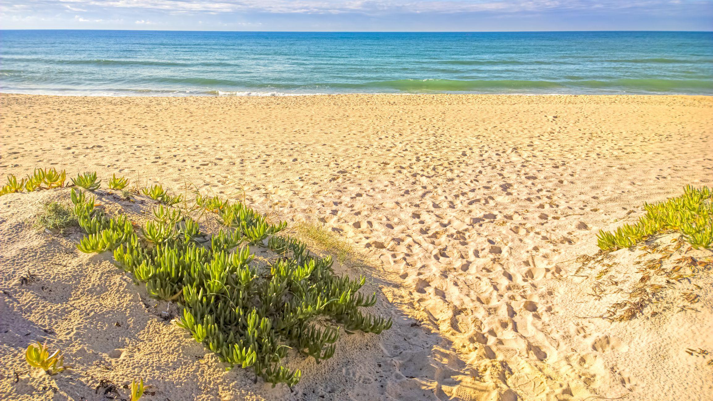 A Guide to Faro Beaches