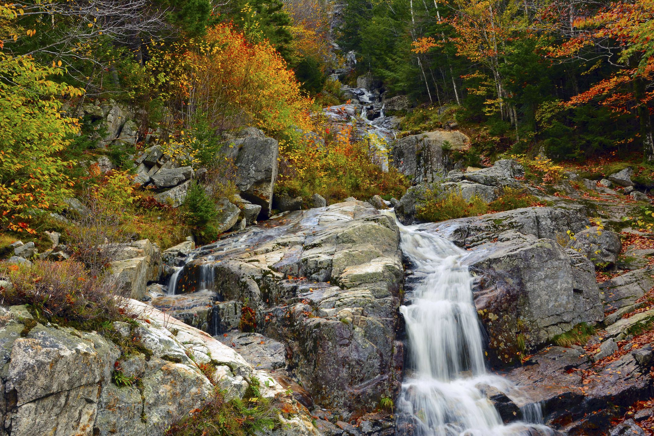 Autumn at Silver Cascade, Crawford Notch State Park, New Hampshire, USA