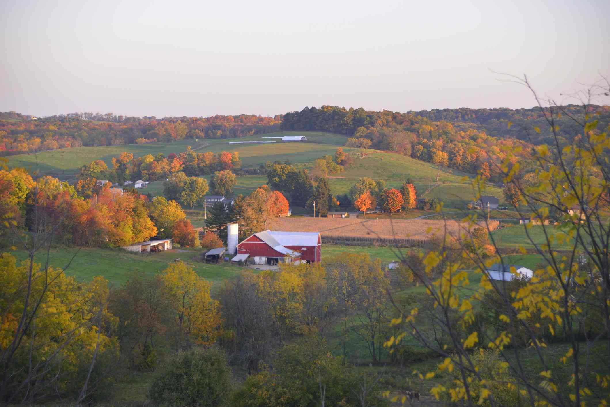 Red Barn Surrounded by Colorful Autumn Trees