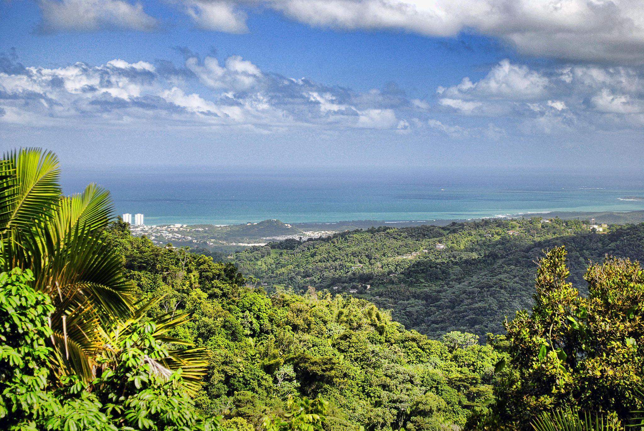 Puerto Rico Vista - Mirando hacia el noreste desde el Parque Nacional El Yunque en Puerto Rico