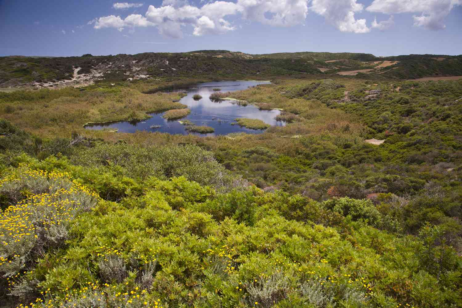 View of S'Albufera National Park on the island of Menorca