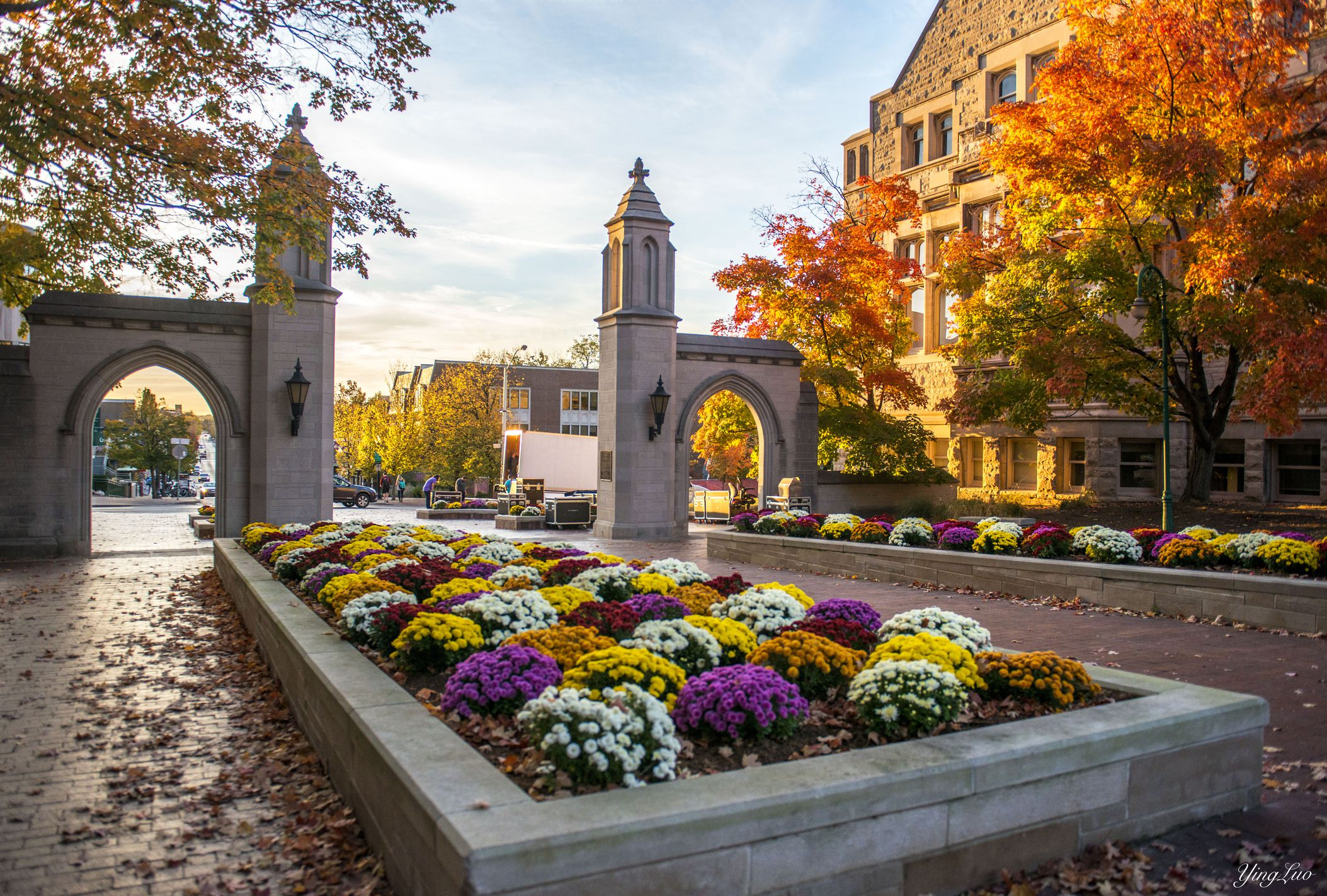 Love My School, Especially In Fall - Indiana University Of Bloomington