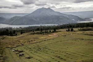 Cultivated fields around Lake Toba
