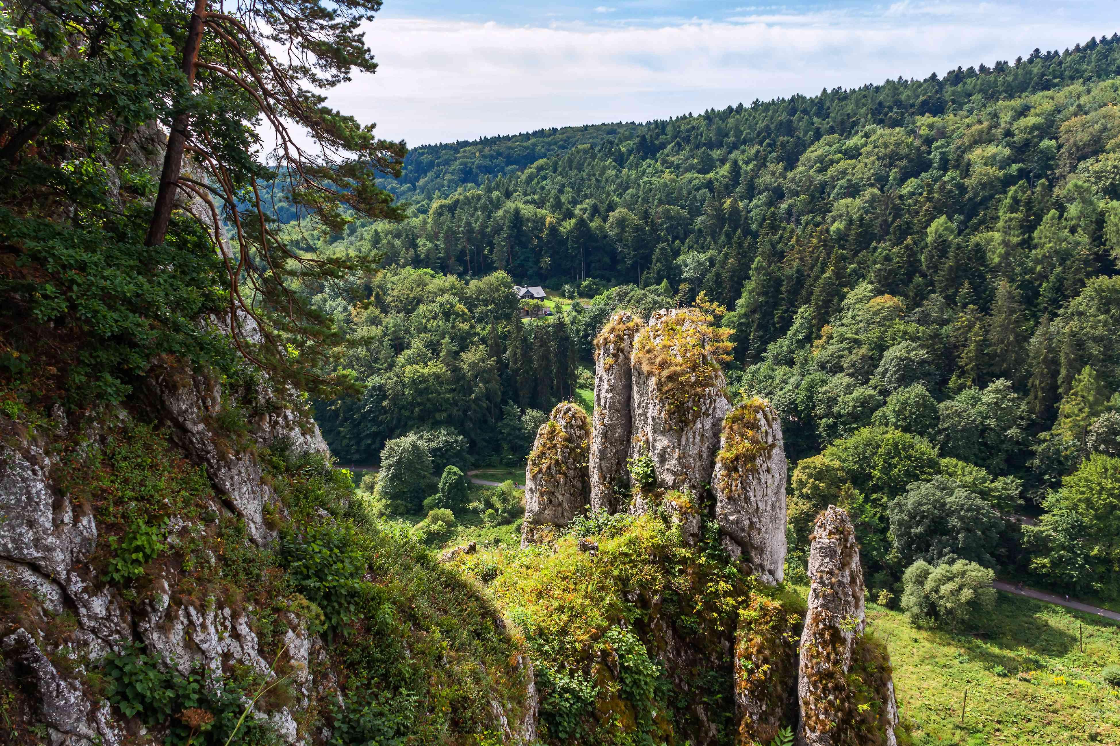 The Glove Rock (Rekawica or Biala Reka) in Ojcow National Park.
