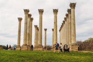 Columns in the National Arboretum