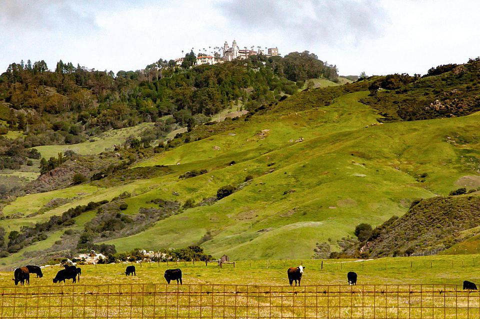 Enchanted Hill (La Cuesta Encantada)