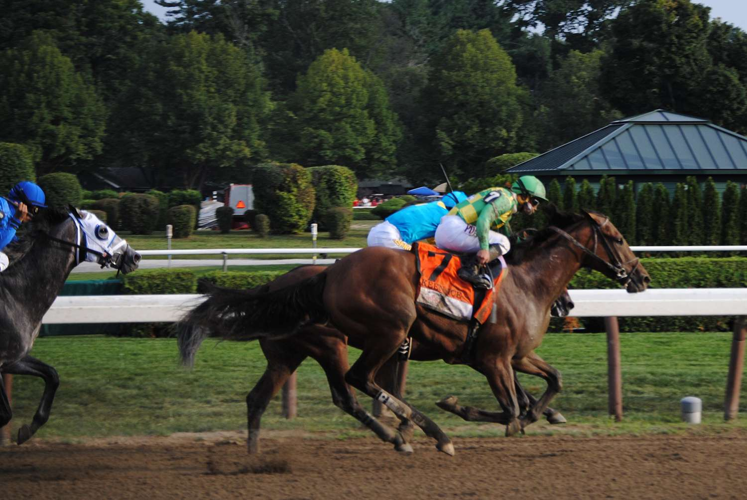 Travers Stakes racehorses