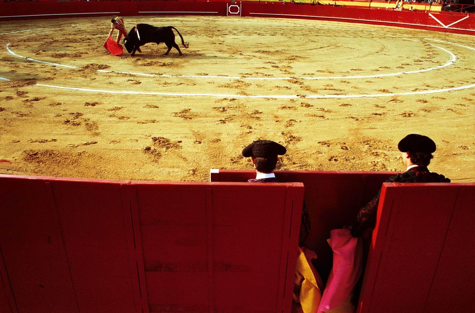 Bull Fight in the arena of Valdemorillo (Madrid)