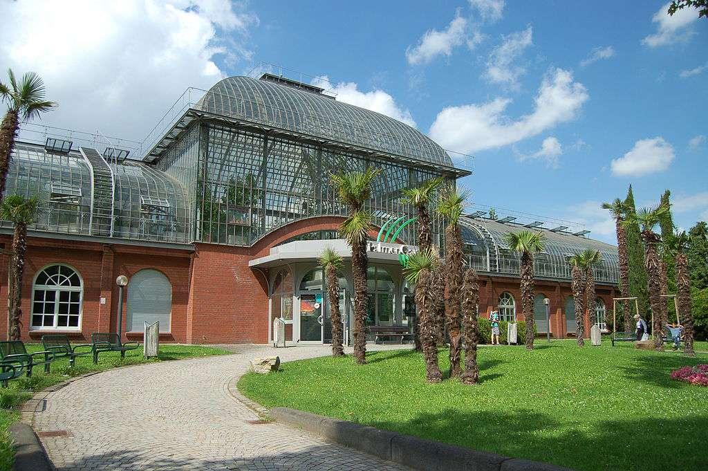 palmengarten frankfurt botanical gardens
