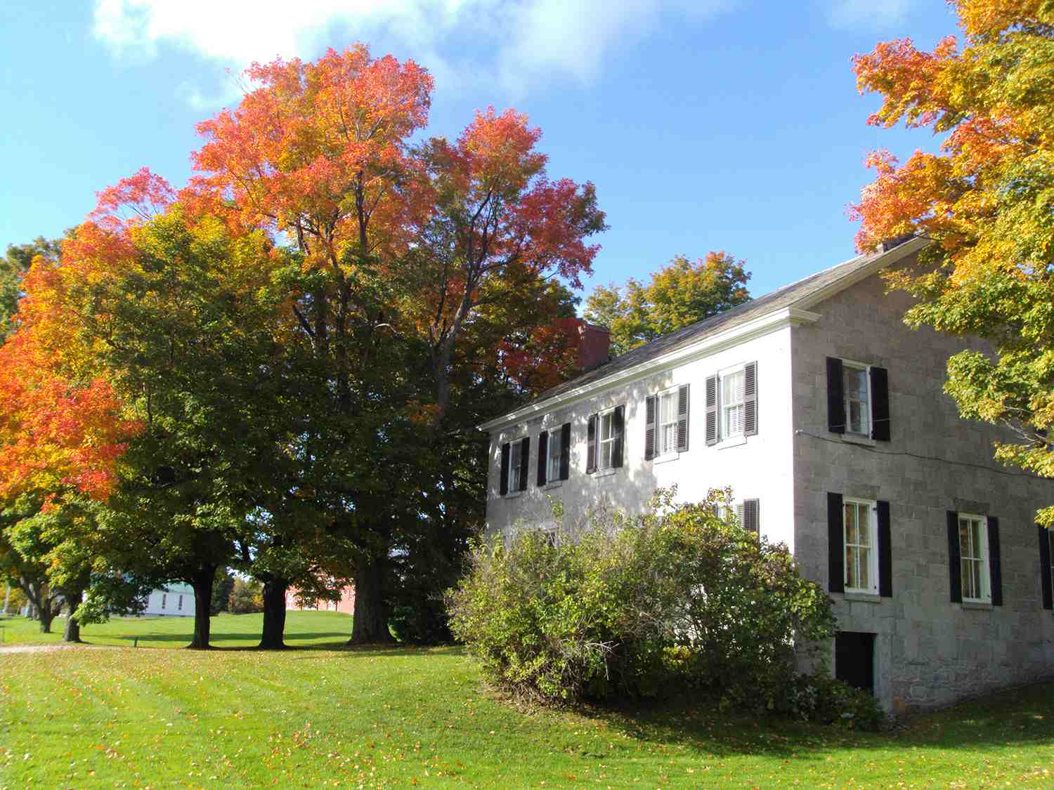 South Hero Vermont Sugar Maple and house.