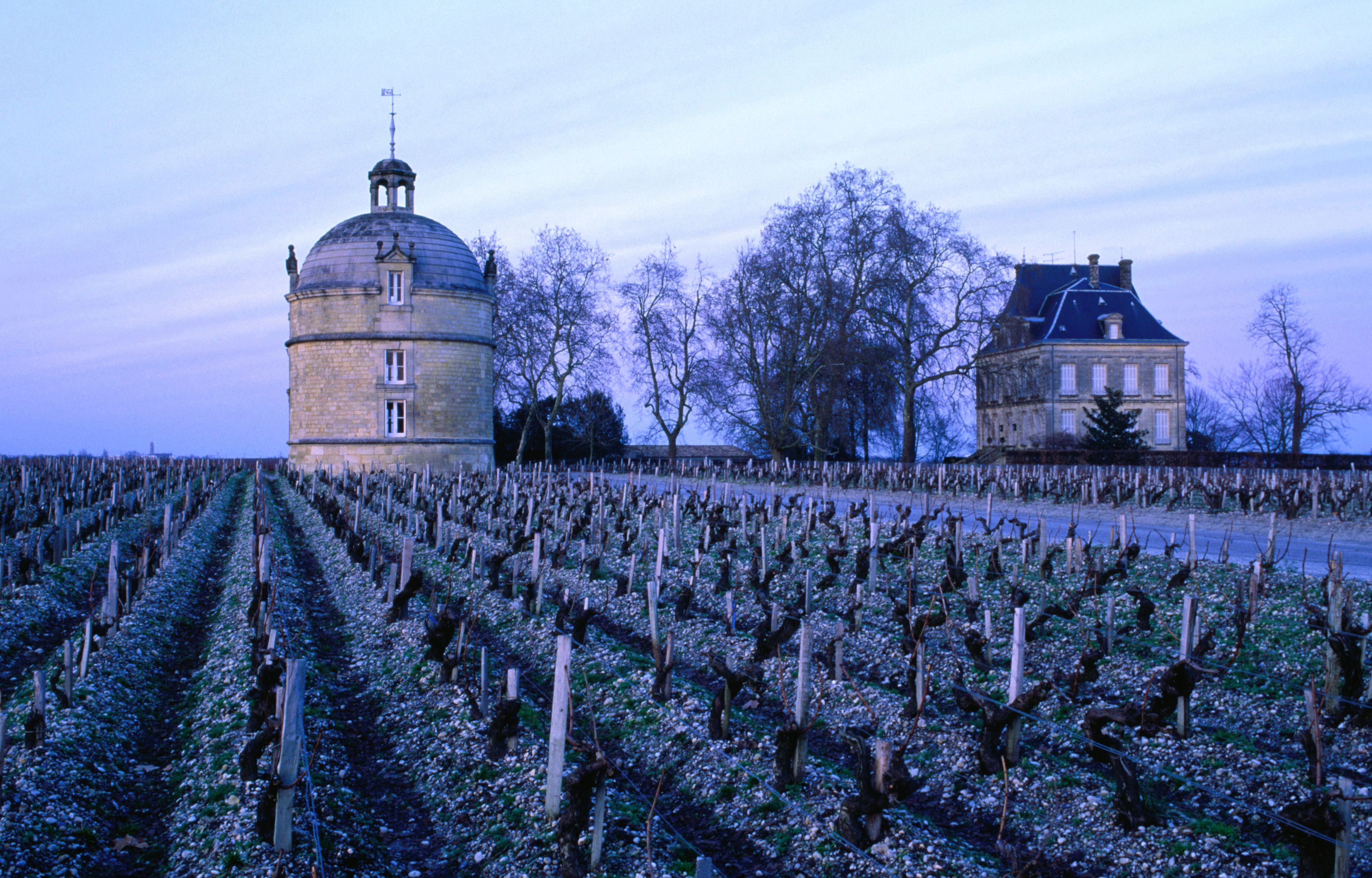 Chateau Latour in Medoc