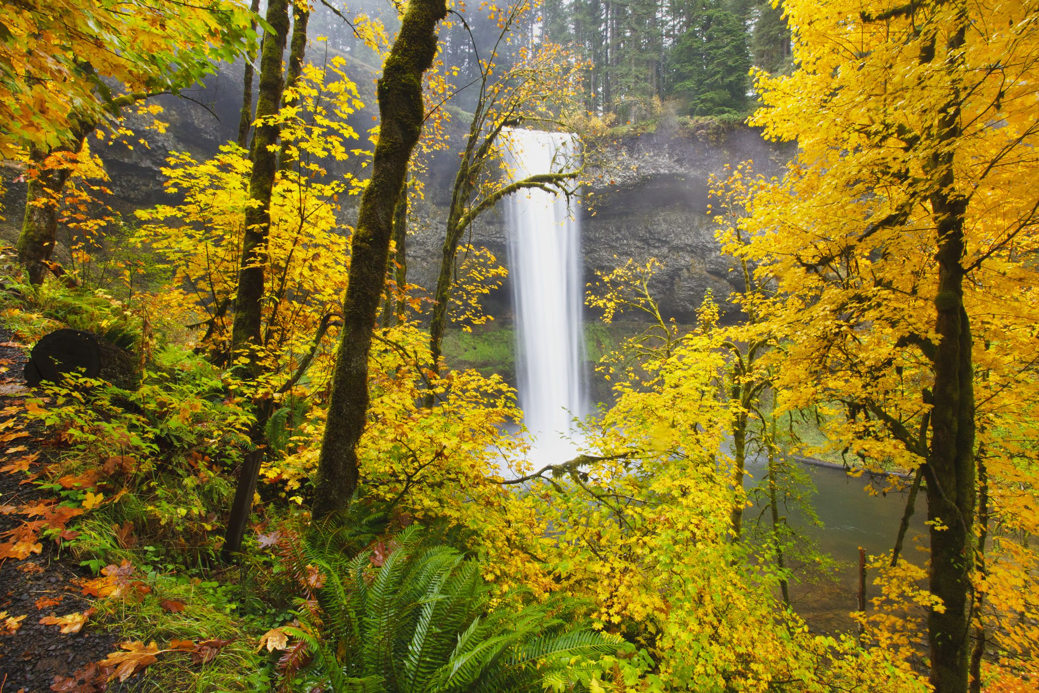 10 Must-Visit State Parks in Oregon