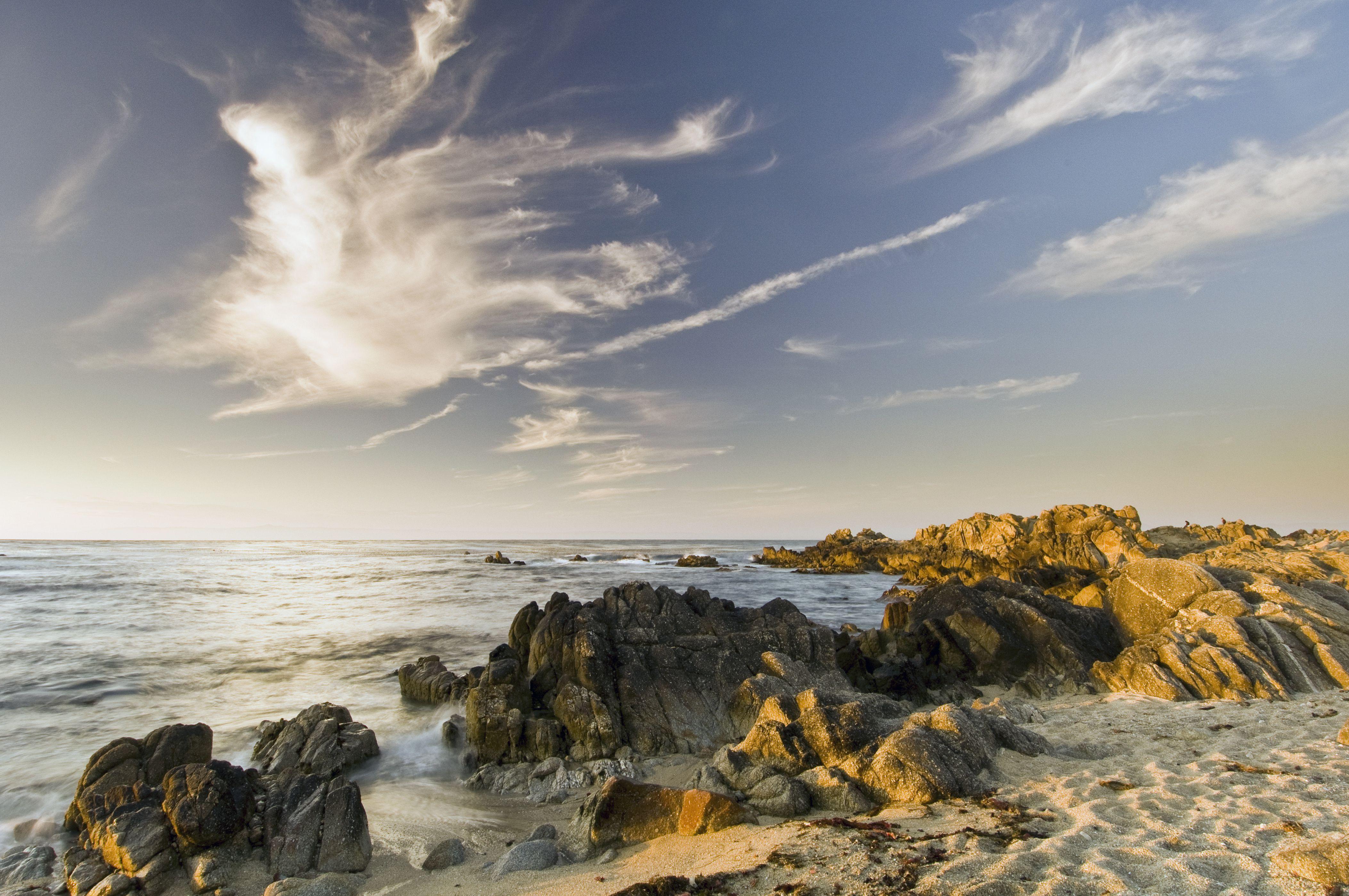 Pacific Grove coastline