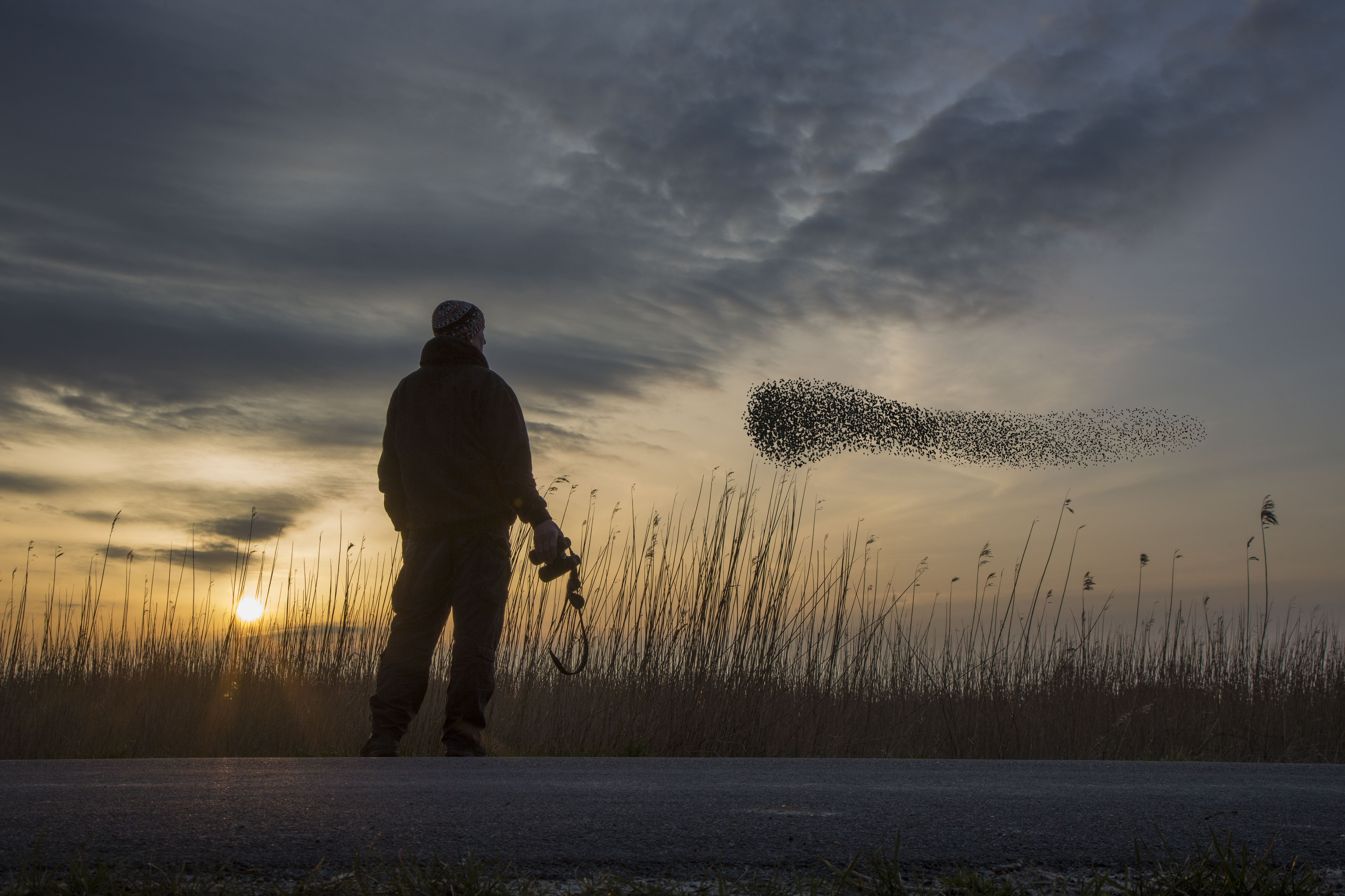 Why Now Is the Perfect Time to Start Birdwatching