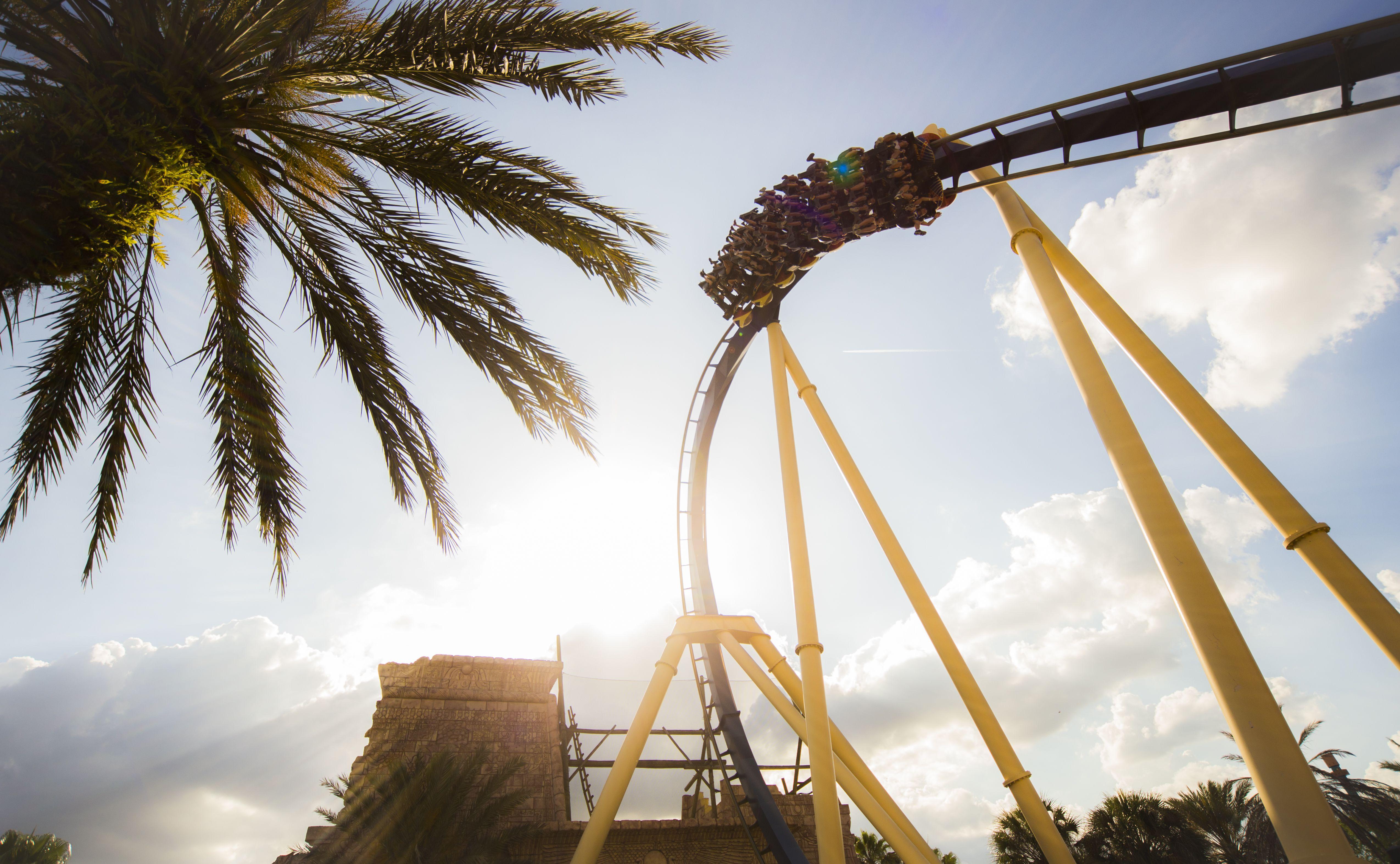 Montu coaster Busch Gardens Tampa