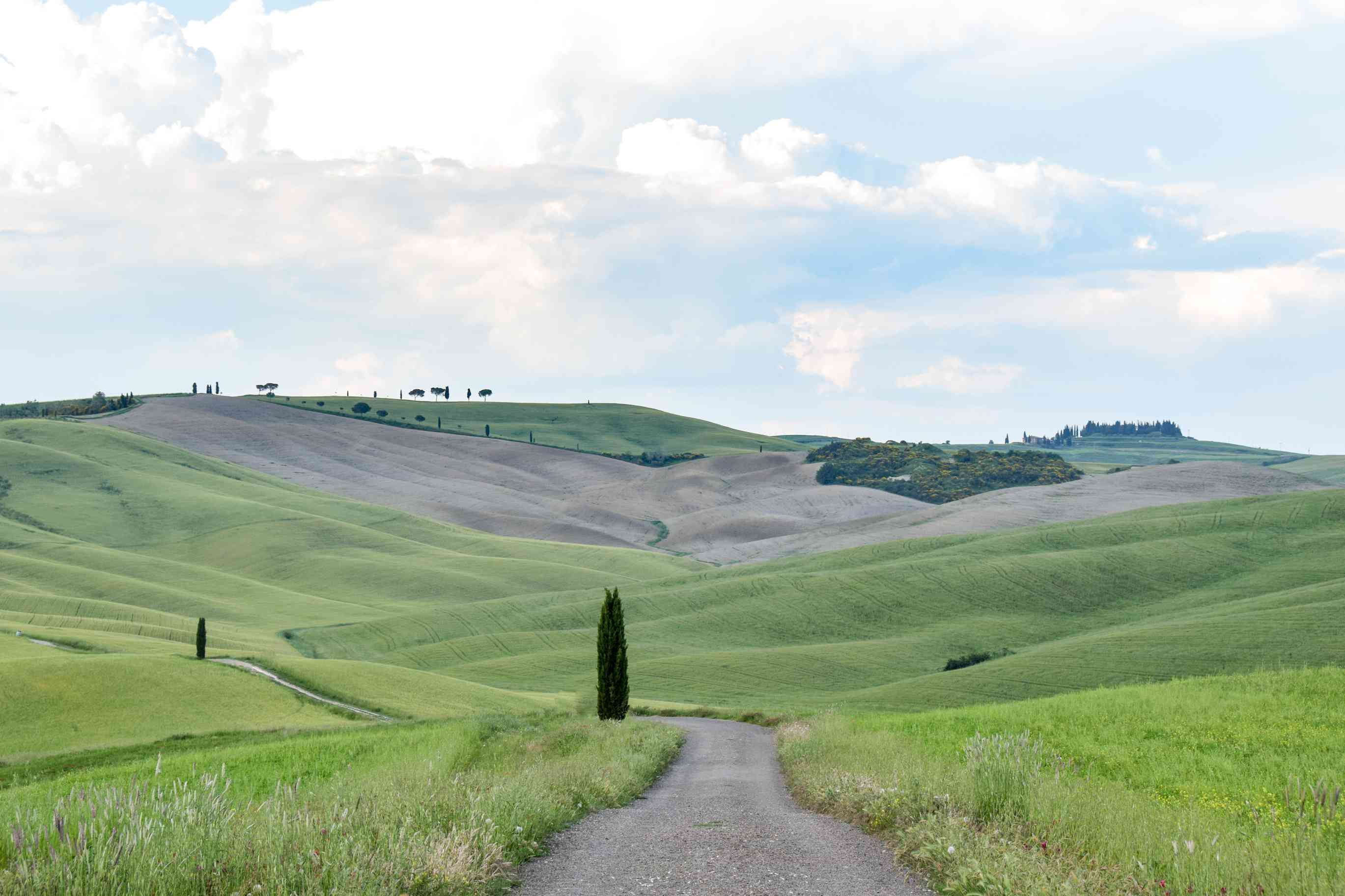 Rolling Green hills of Val d'Orcia