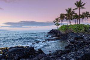 A rising sun illuminates a lava strewn shoreline on the Kona coast of the island of Hawaii as palm tree sway in the wind.