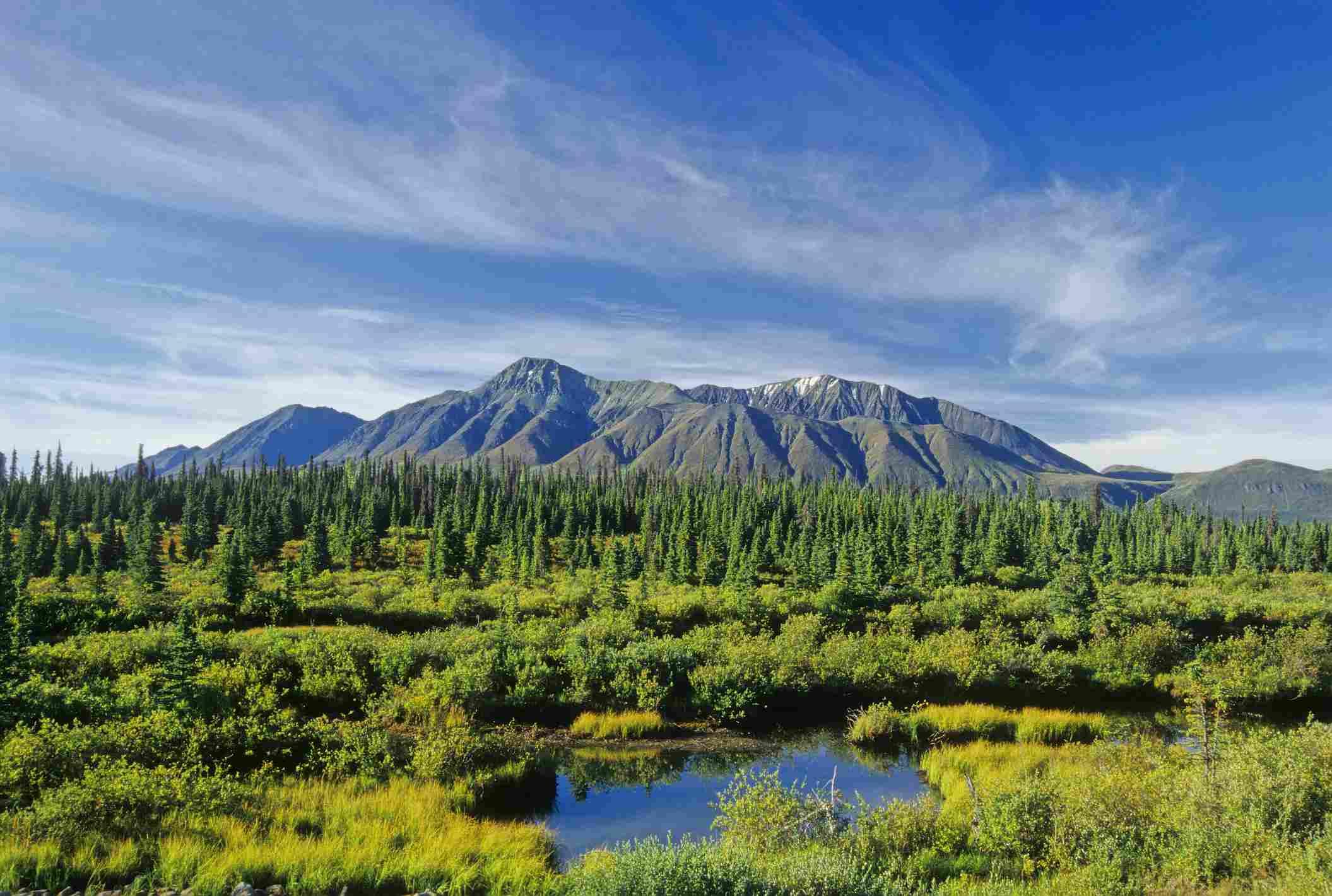 Kluane National Park in the Yukon