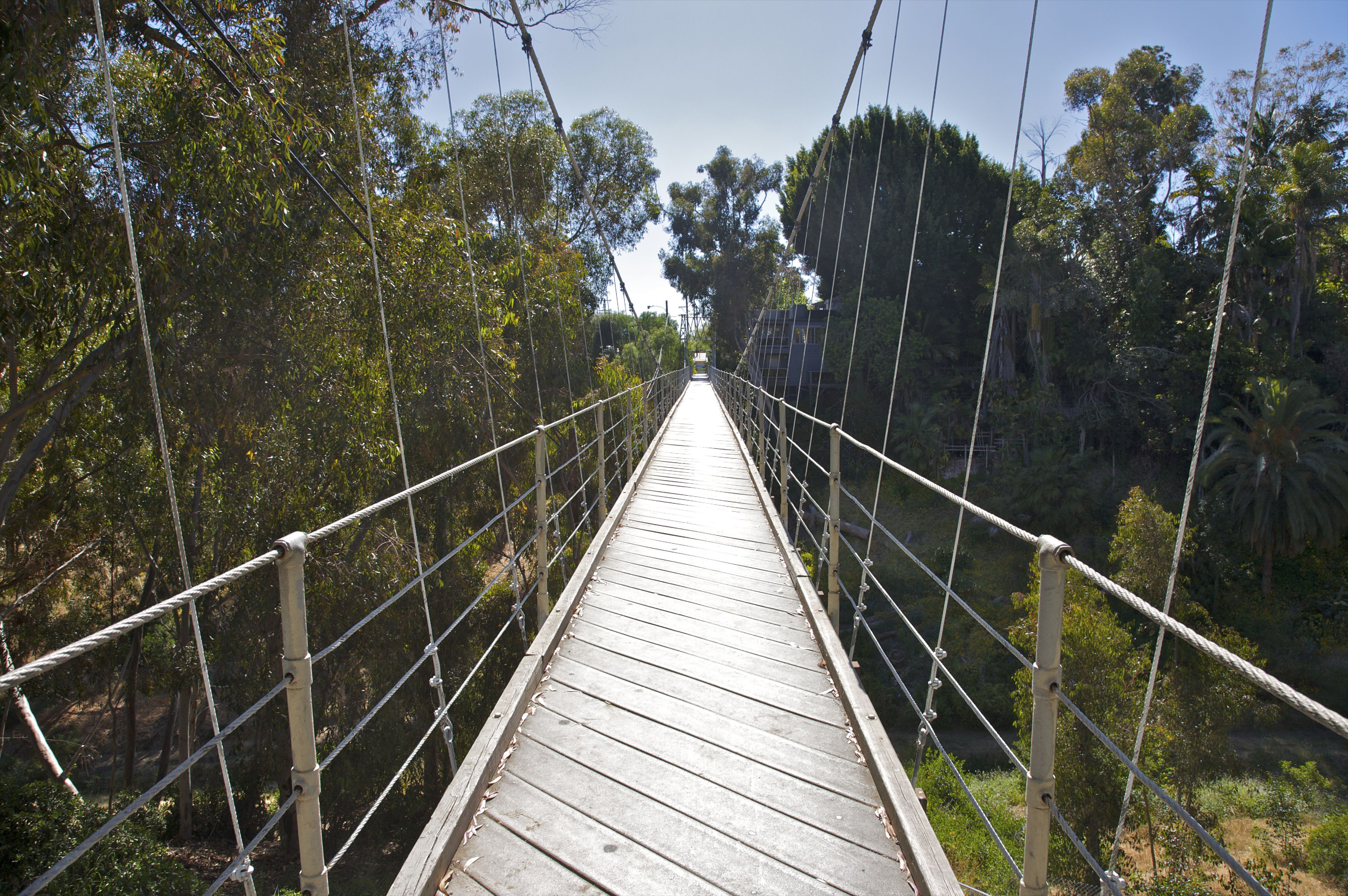 Wood cabled bridge over canyon.