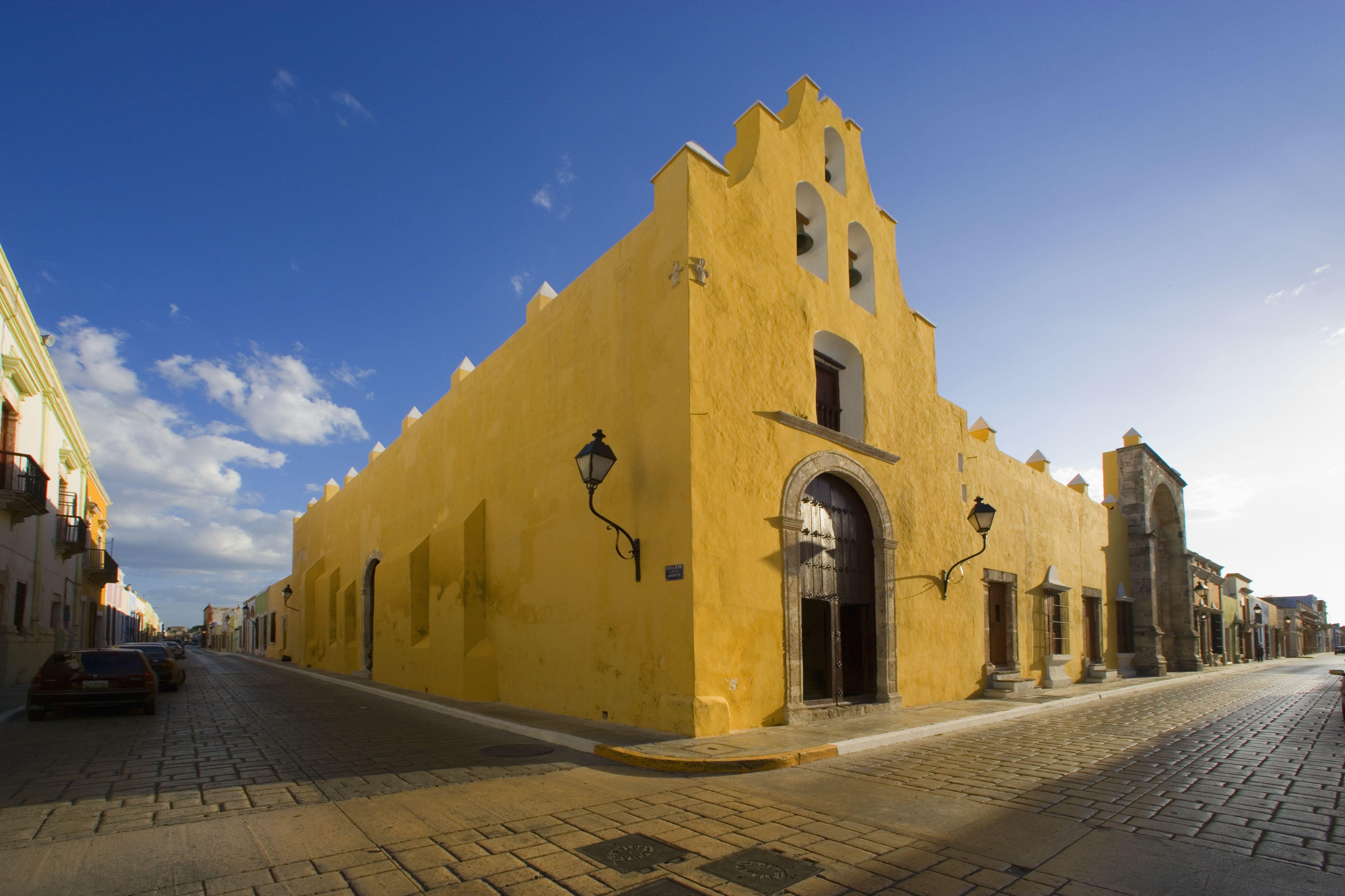 кампече мексика фото дарвиновых гибридов