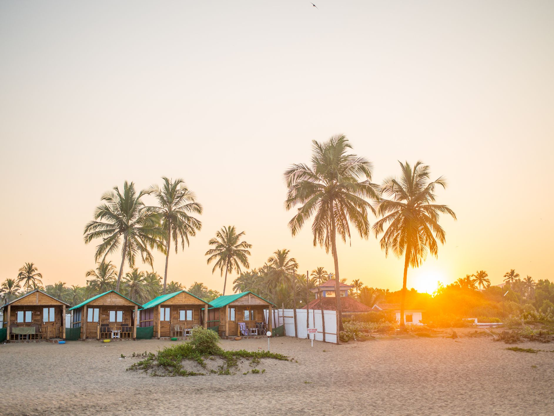 Agonda Beach in Goa: Your Essential Travel Guide