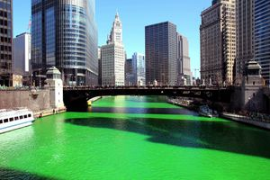 River Dyed Green in Chicago