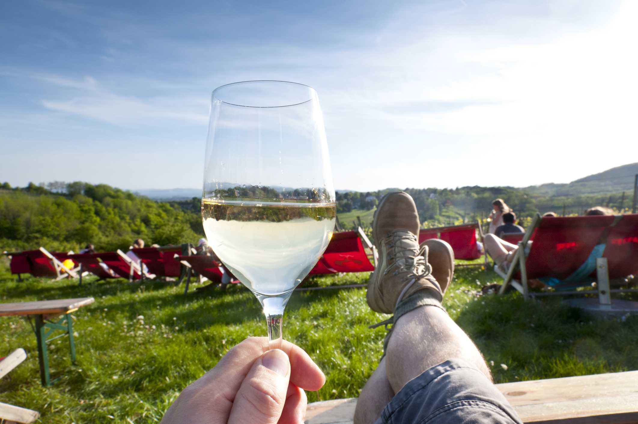 Sentado en el viñedo en un Heurigen en Viena Nussberg en el sol de la tarde de primavera con un vaso de vino blanco fresco y afrutado en la mano