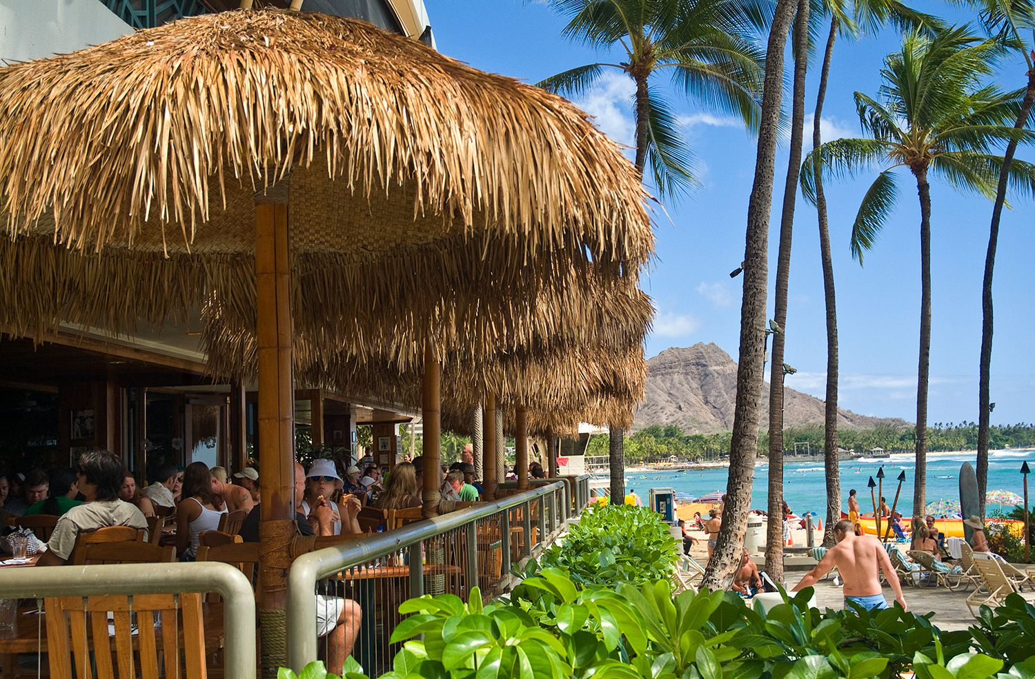 Things To Do For Thanksgiving In Waikiki And Honolulu