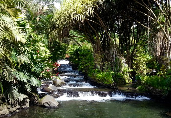 Thermal springs and waterfall at Tabacon in Costa Rica