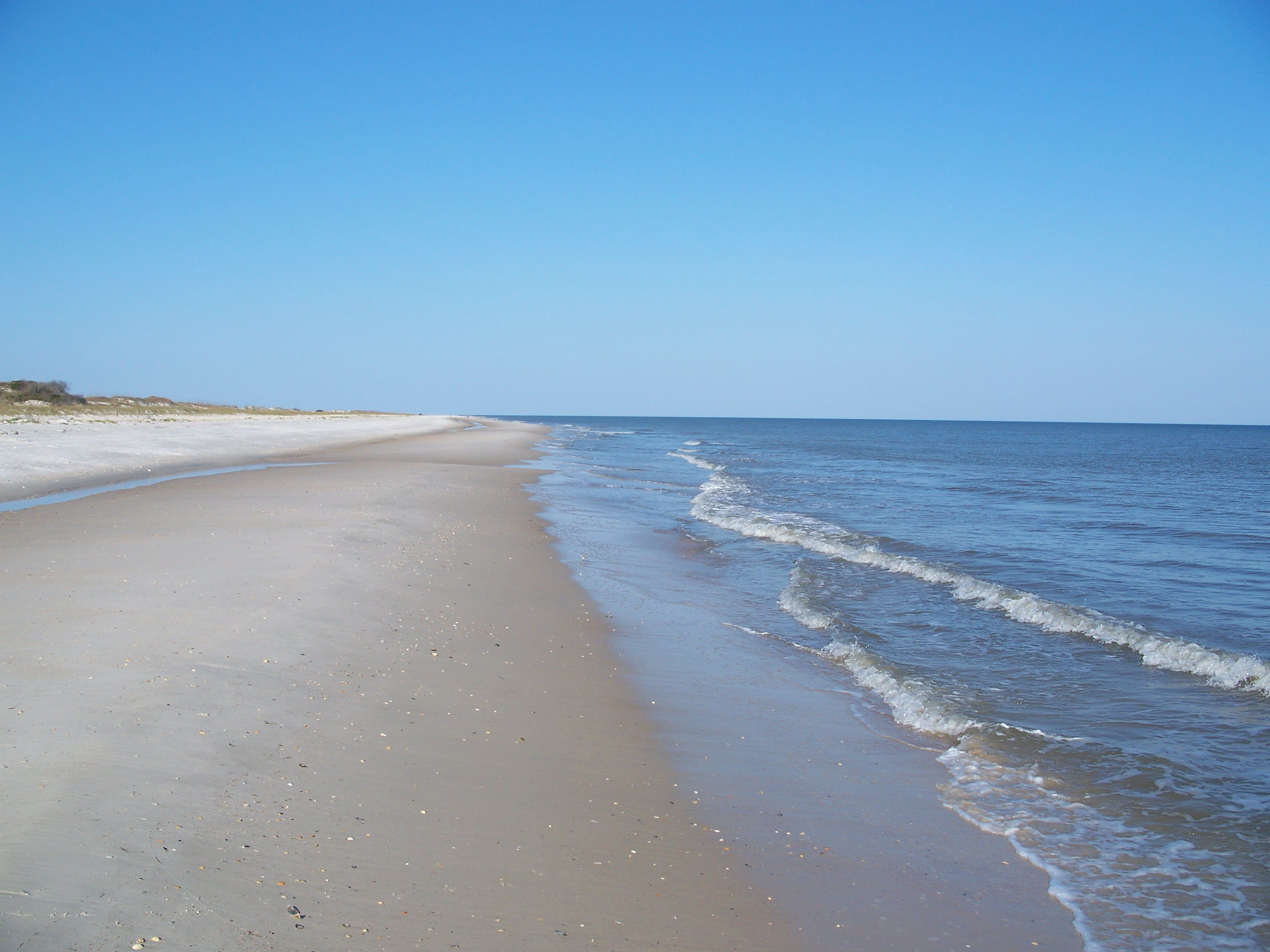 Top 6 Fun Things to Do on St. George Island With Kids
