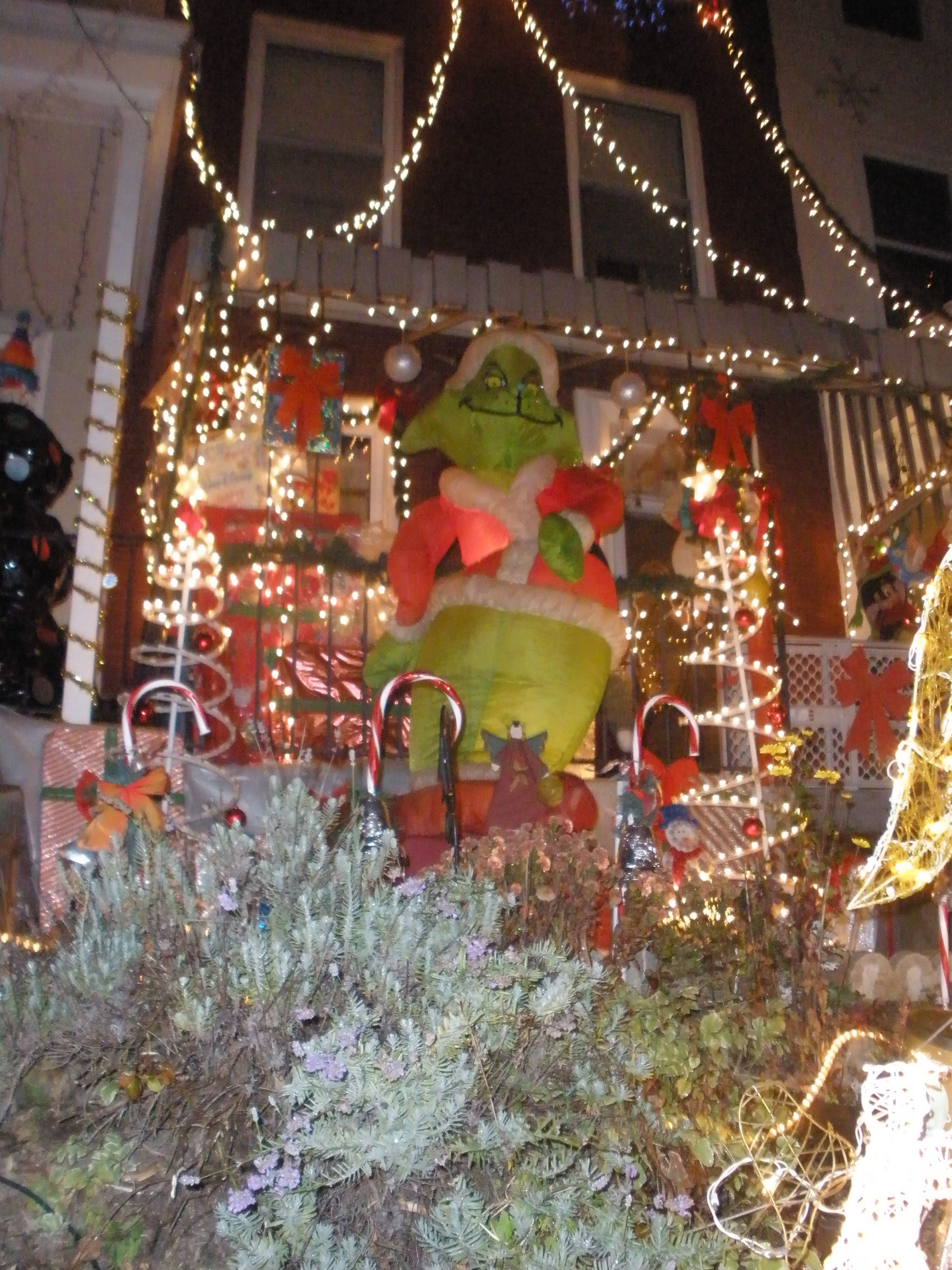 Baltimore Sightseeing Christmas Lights in Hampden
