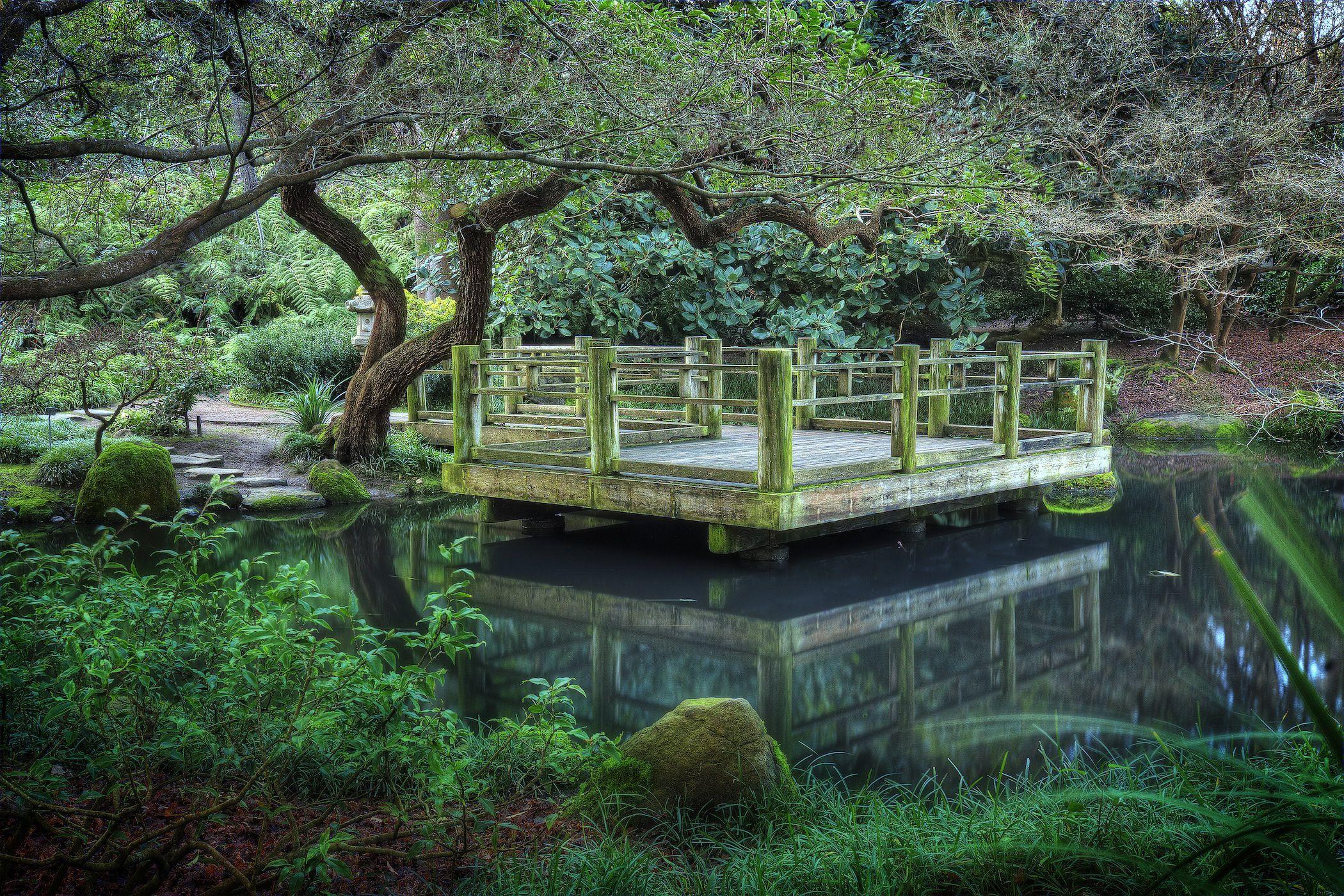 The Moon Viewing Garden in the SF Botanical Garden