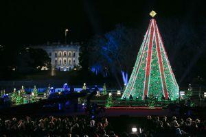 96th Annual National Christmas Tree Lighting