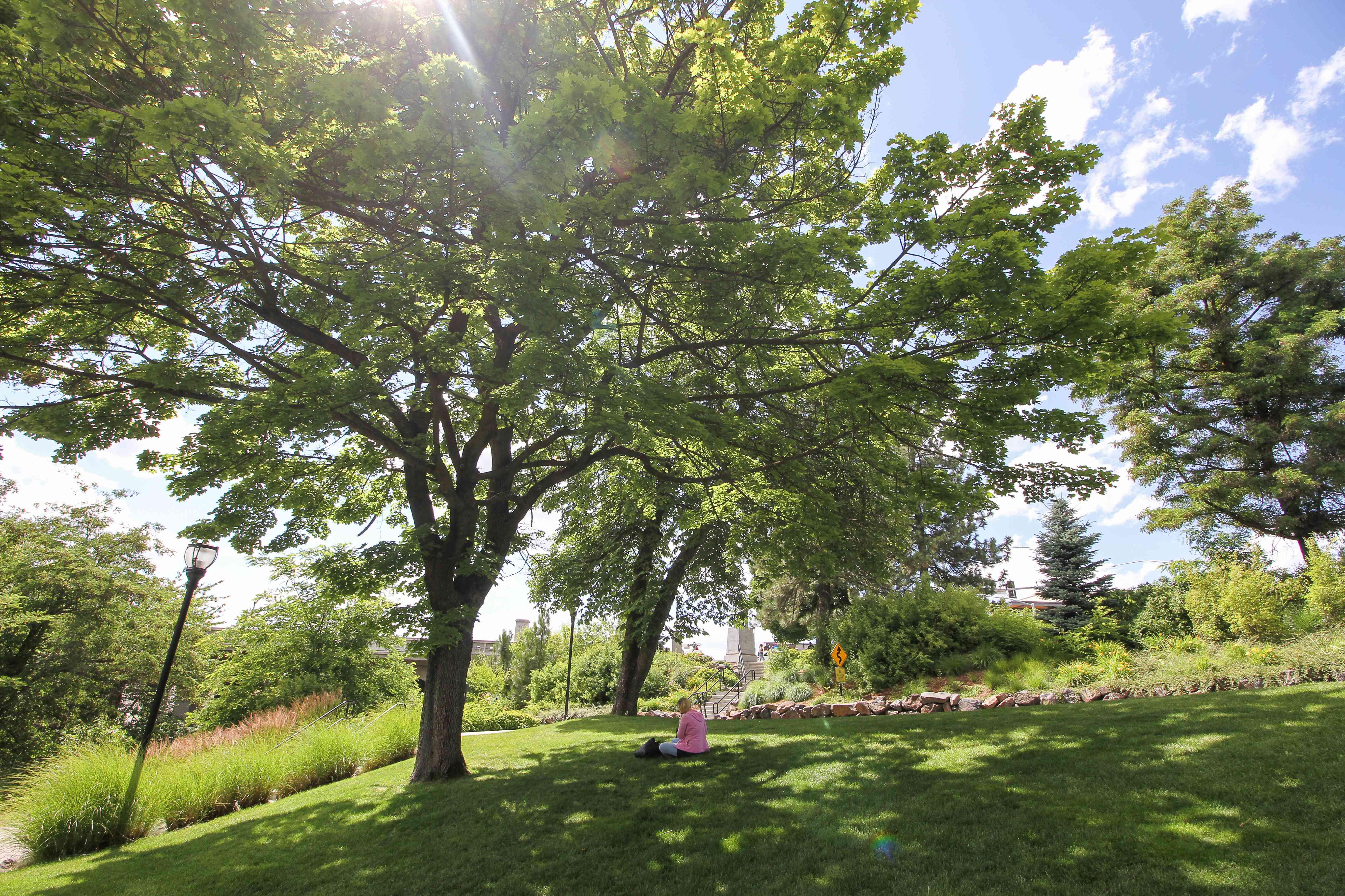 Una mujer que se relaja bajo un árbol en Riverfront Parque