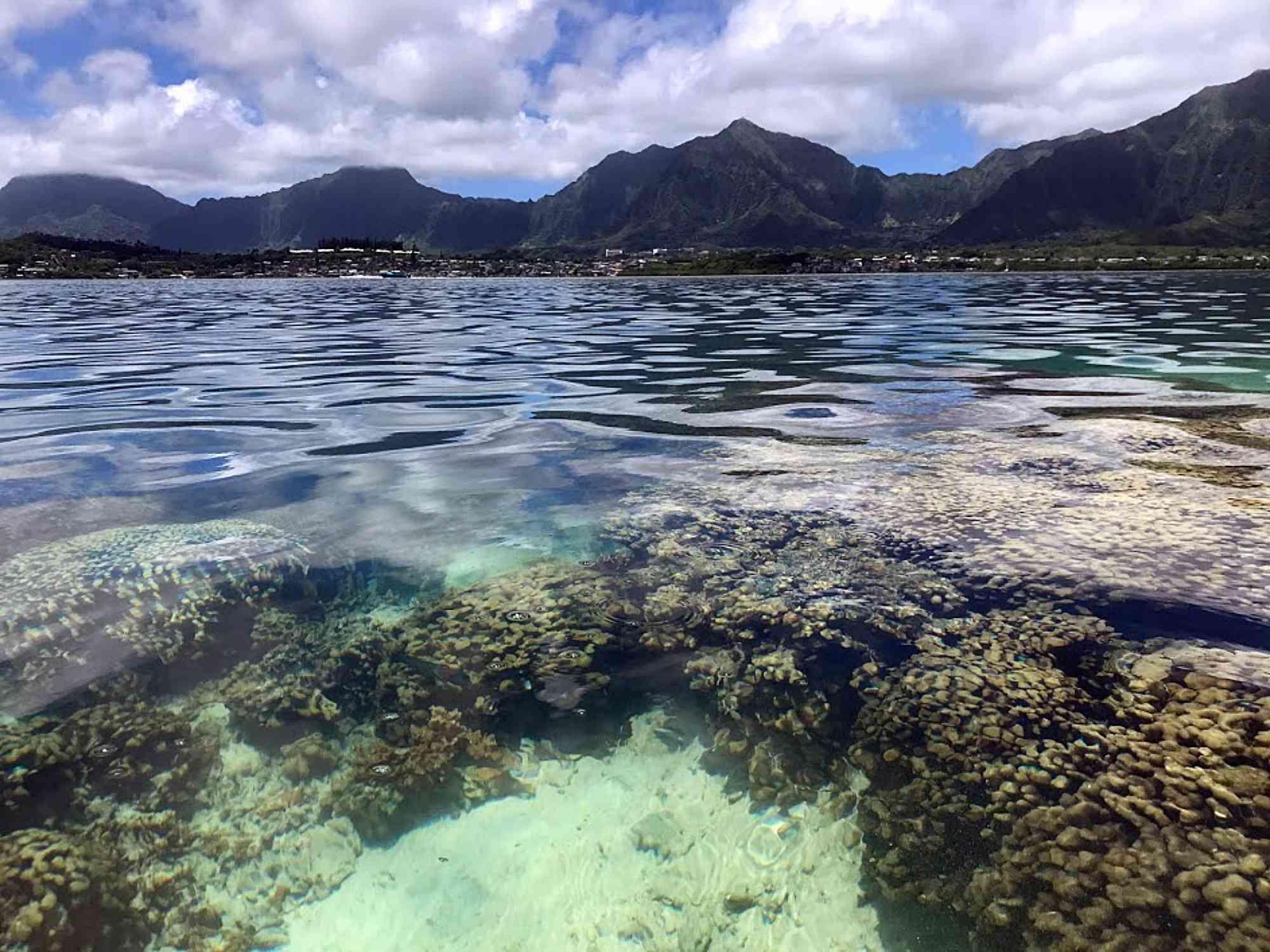 Parque estatal Heeia en Oahu