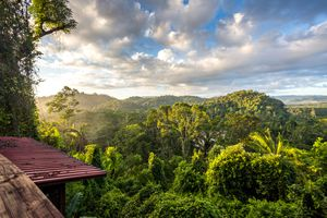 Stunning landscape of Mayan Rainforest above the tree canopy with dramatic blue sky