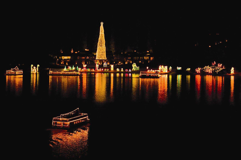 World's tallest living Christmas tree