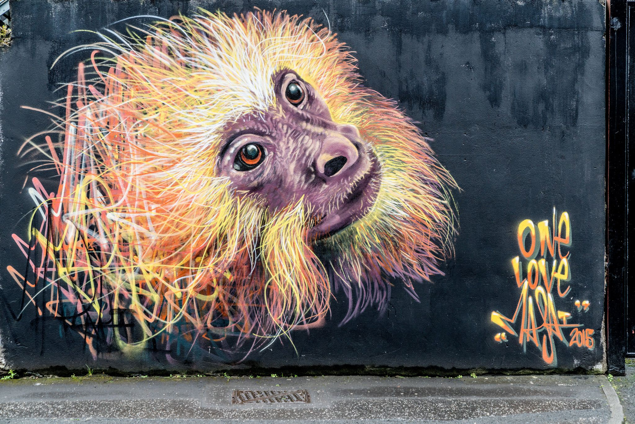 Monkey mural in Belfast