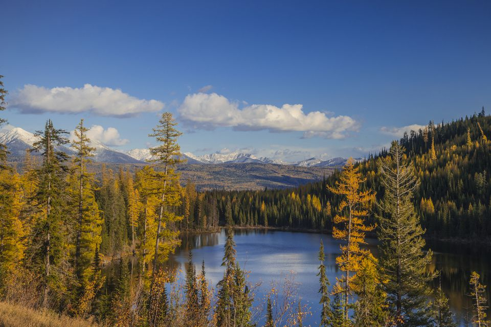 Marshall Lake in autumn at Swan Valley of Lolo National Forest, Montana, USA
