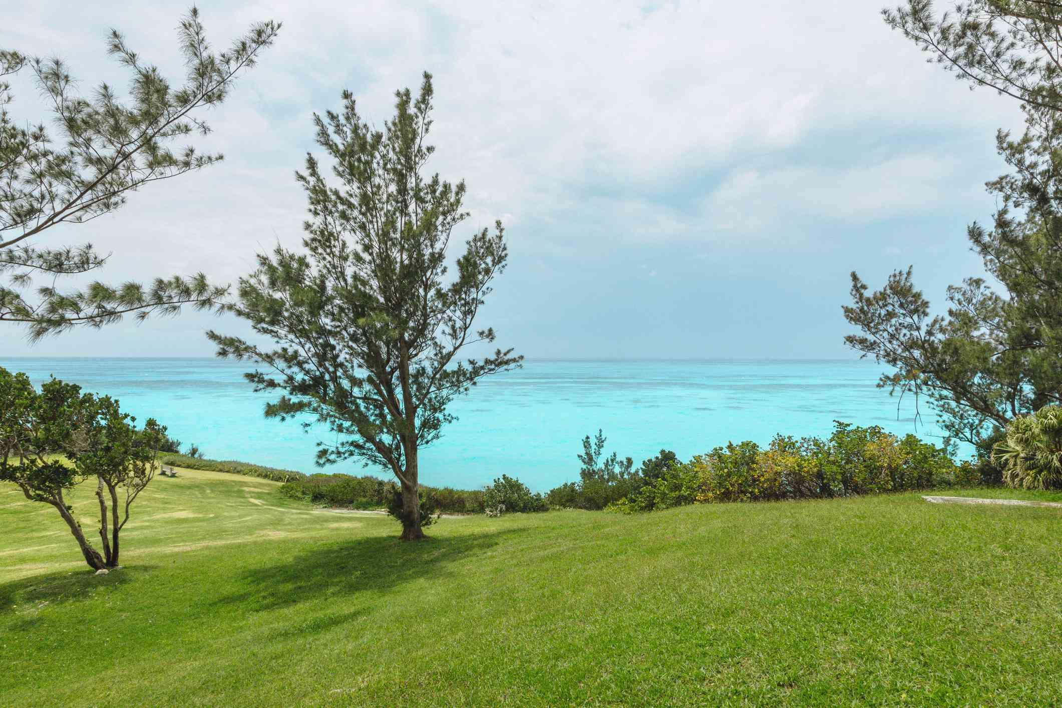 Whale Bay Park in Bermuda