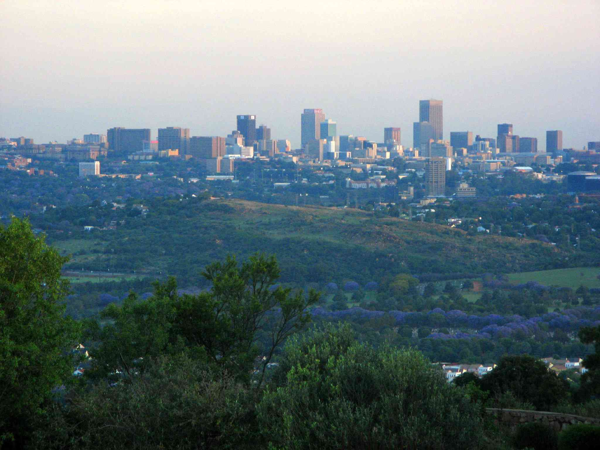 Looking towards the CBD (Central Business District), with the Melville Koppies nature reserve in the middle. Lines of Jacarandas visible too.