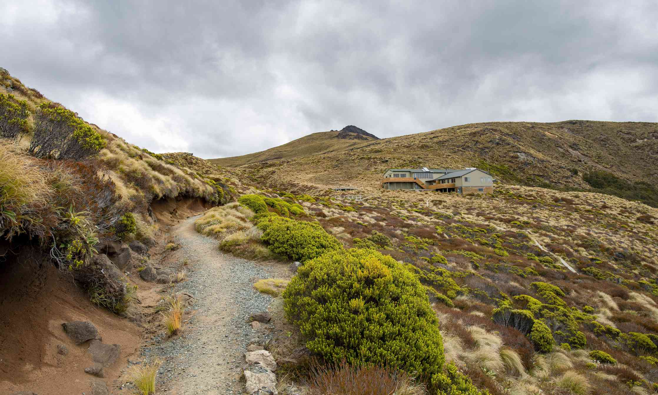 Kepler Track hiking trail, Luxmore Hat, Fiordland National Park, Southland, South Island, New Zealand