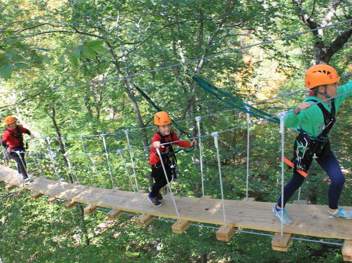 ZipZone Canopy Tours in Columbus