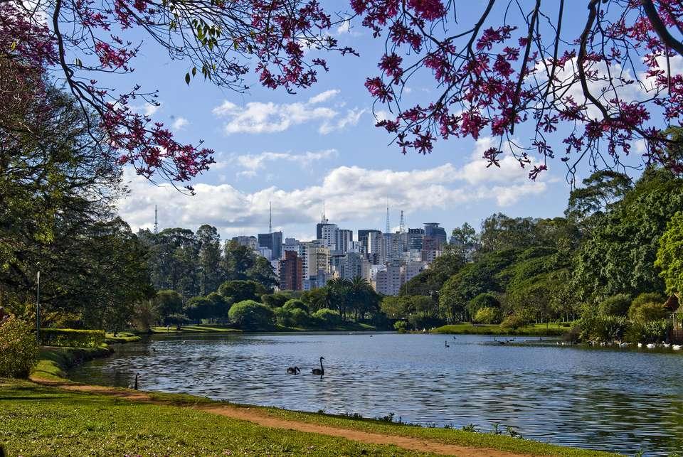 Skyline of Sao Paulo, Brazil, viewed from the lagoon in Ibirapuera Park
