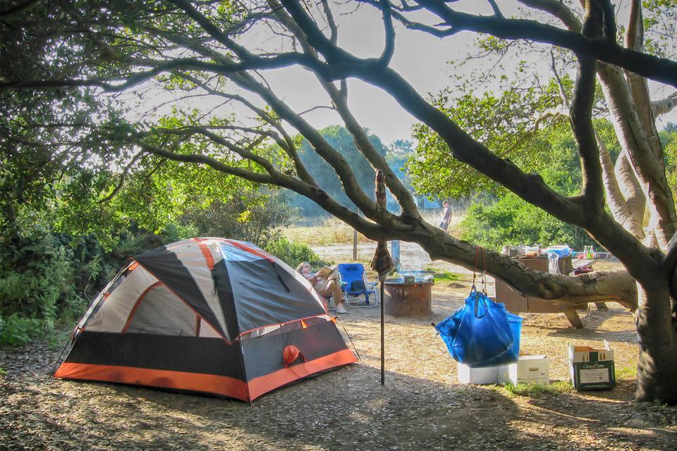 Campsite 56, Manesa State Beach