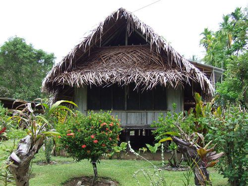 Traditional Native Home Made from Sago Palms on Papua New Guinea