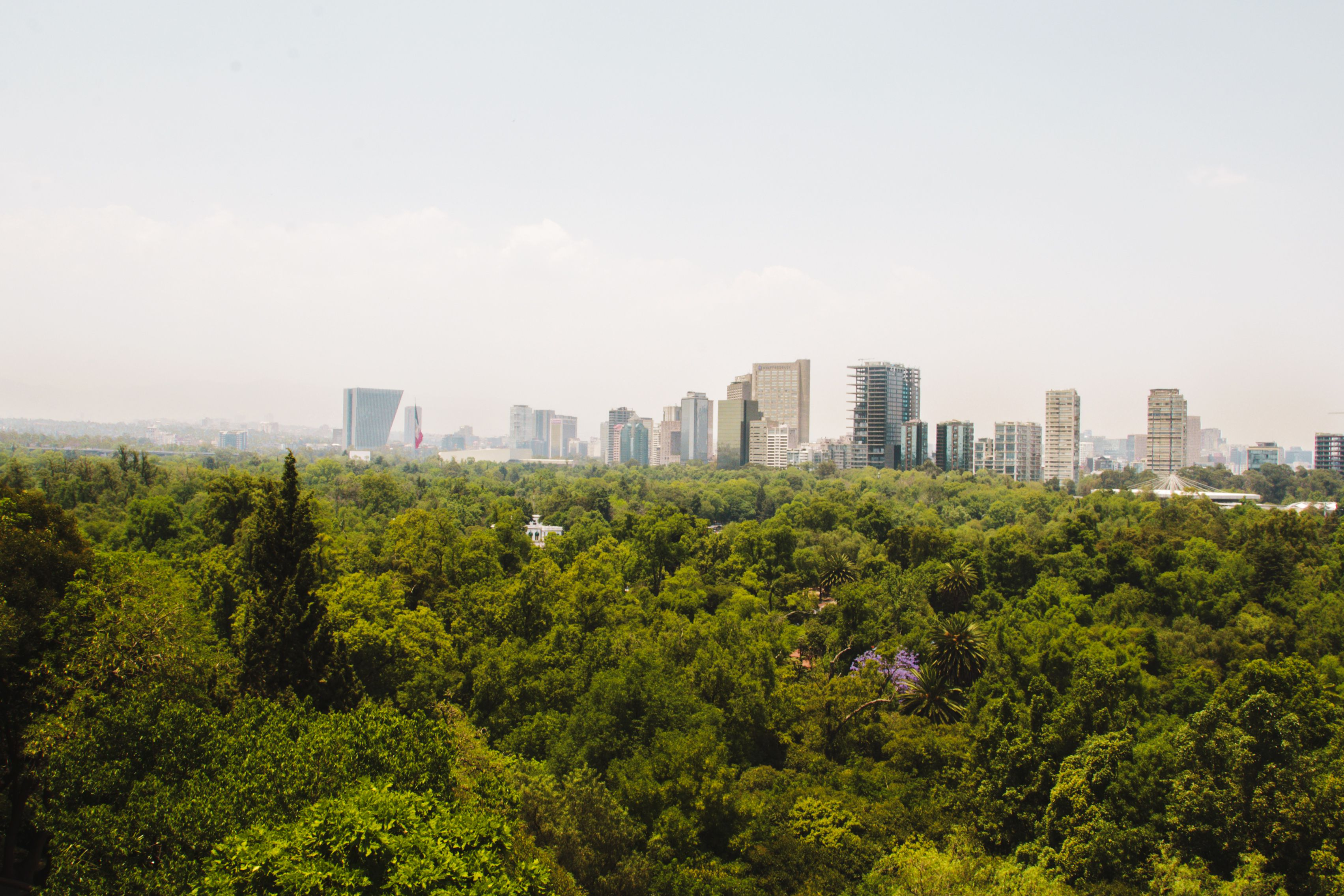 Chapultepec Park with the mexico city skyline in the background