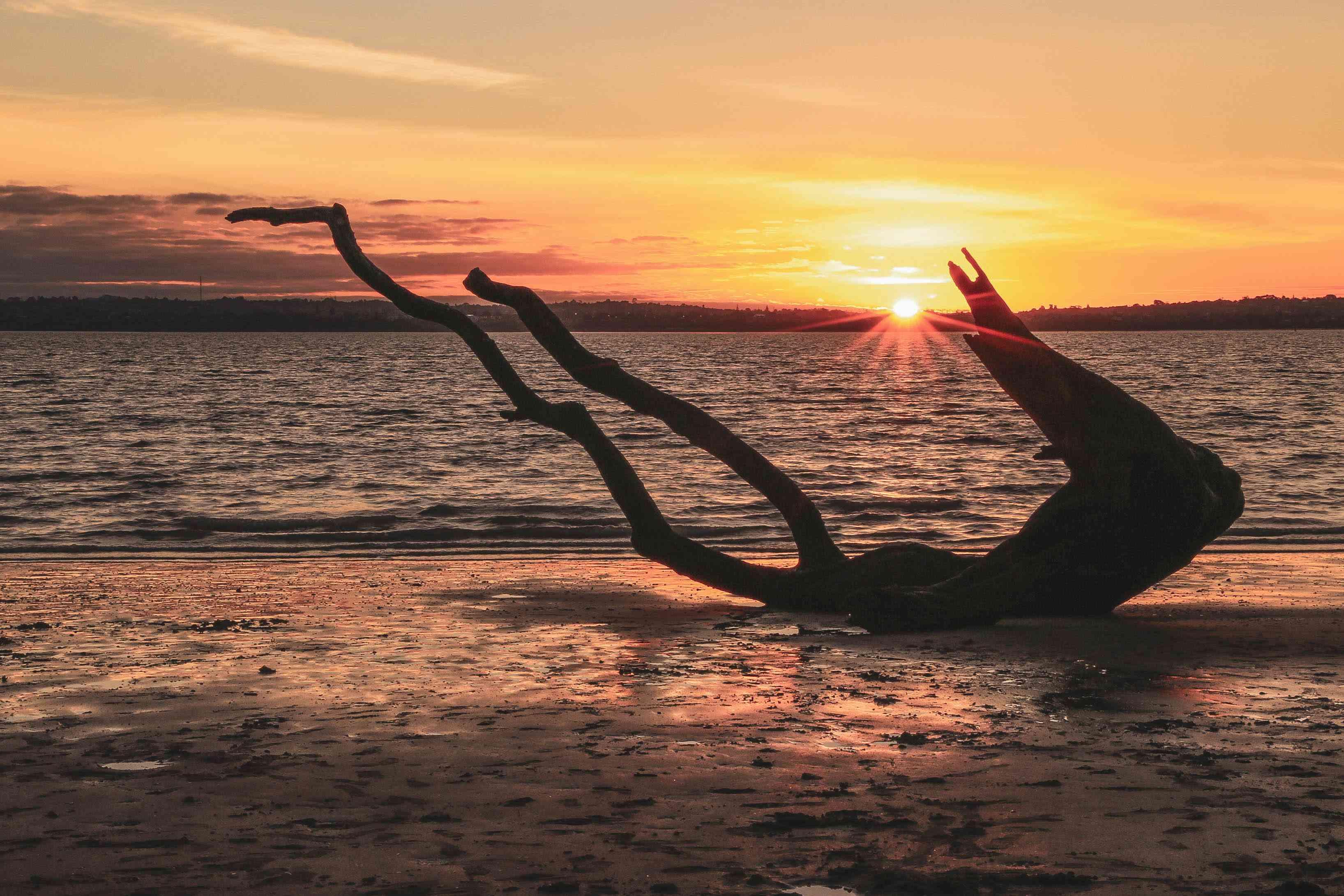 Sunset on Chevalier Beach