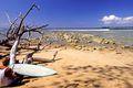 Little Andaman Island, man with surfboard