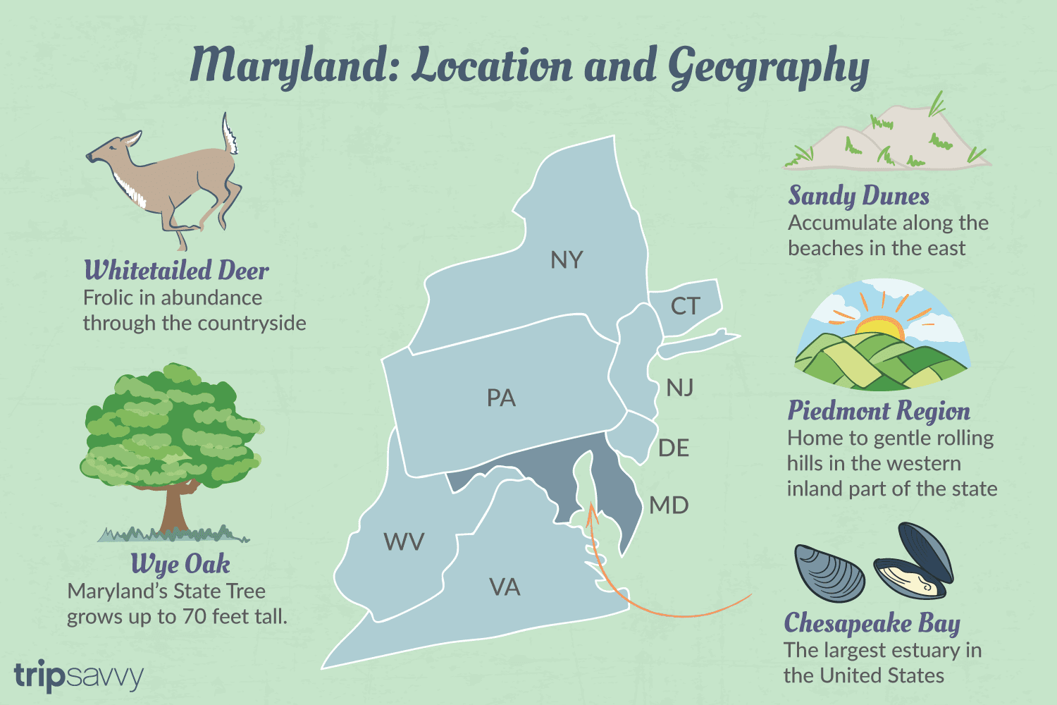 Where Is Maryland Map Location and Geography